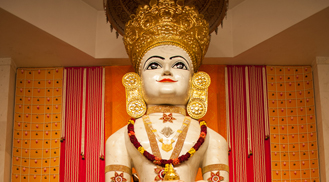Swami Janma Kalyanak 2019